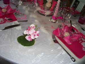 Table rose impatiens 025