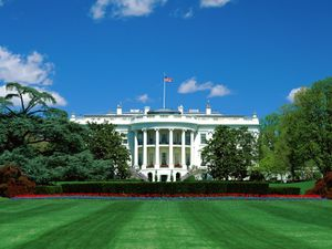 09---washington-white-house.jpg