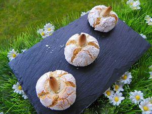 petits-biscuits-7.jpg
