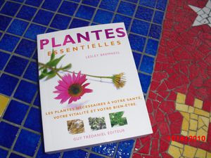 PLANTES-ESSENTIELLES-.JPG