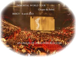 French-immortal-Bercy.jpg