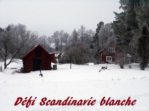 dc3a9fi-scandinavie-blanche
