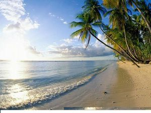 Beaches%20-%20Pigeon%20Point,%20Tobago