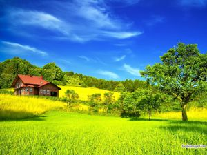 nature-image-hq-wallpapers-freehqimage.com-99999534.jpg