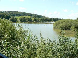 etang-des-forges--copie-1.jpg
