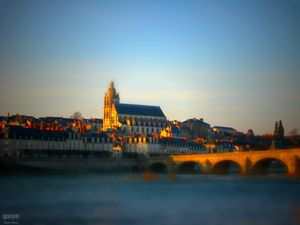 blois steph back