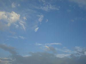 BEP juillet 2010 010