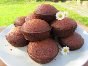 muffins courge
