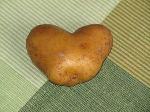 patate coeur