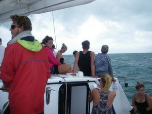 Whitsunday 5