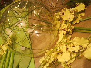 bulle-orchidee-papillon-sia.JPG