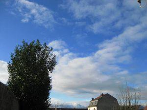 la-tete-dans-les-nuages-14-12-11-6337.JPG
