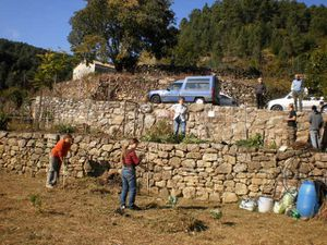 chantier-collectif-au-jardin-du-Roubreau-Oct2011.JPG