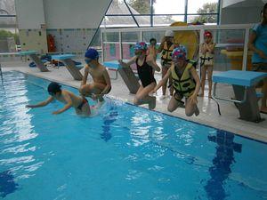Les ce1 la piscine ecole du sacr coeur de plougonvelin for Piscine plougonvelin