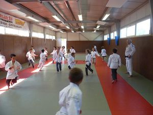 judoCE10013