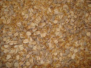 biscuits-cereales4