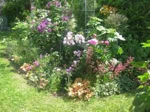 Un mixed border l 39 anglaise le blog de for Haie jardin anglais