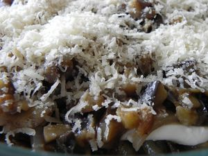 Gratin-d-aubergines-aux-2-fromages-italiens--3-.JPG