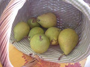Confiture pêches blanches poires à la vanille (2)