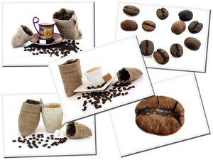 café2 580