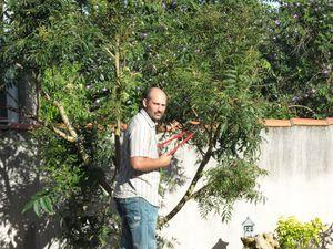 Jardinier professionnel à airvault
