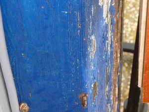 Images-de-printemps--d-automne-etonnantes-347.JPG