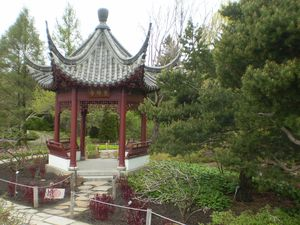 jardin botanique 15-05-11 (169)