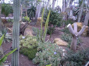 jardin botanique 15-05-11 (116)
