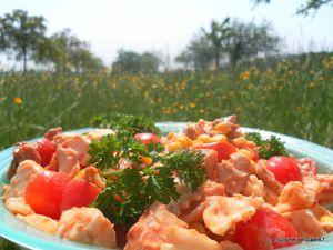 salade pic nic, tupperware