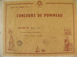 123 Un des diplômes d'Hugues Desfrièches