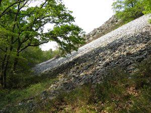 Pierrier de grès dans la vallée de Misère (Saint-Léonard-des-Bois)