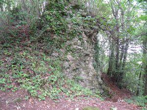 Les ruines du château de La-Roche-Mabile (11ème siècle)