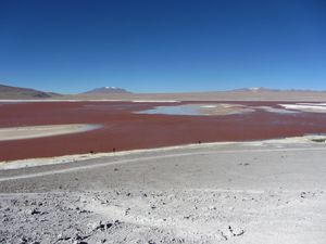 2012082451 Salar d'Uyuni Sud Lipes Laguna Colorada