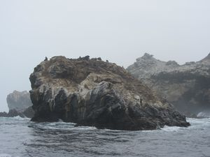2012083064 Réserve des manchots Isla Choros