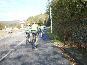 Appel des Pyrénées 2014 051