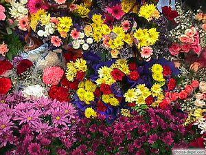 fleursval.jpg