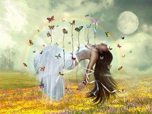 papillon-joie-abaondance.jpg