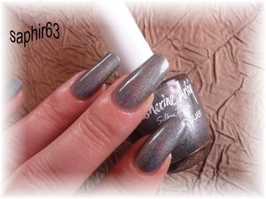 gris-antracite-catherine-arley--2-.JPG