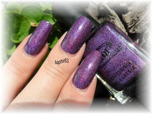 wild-at-heart-holo--8-.JPG