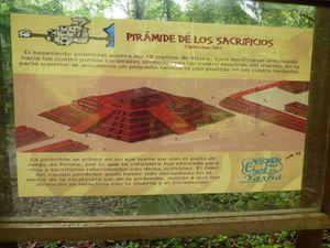 Maya reconstitue