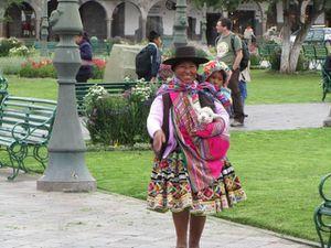 Cusco habit tradi