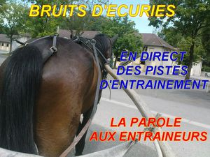 bruits decuries