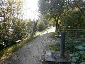 23 - Jardin de l'Orangeraie, Bègles