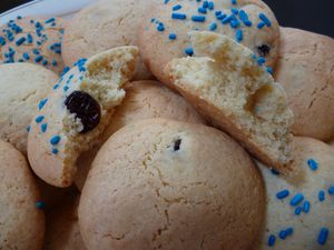 Cookies aux cranberries (12)