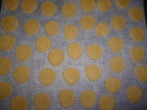 Biscuits-coquillage-citron-chocolat--2-.JPG
