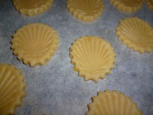 Biscuits-coquillage-citron-chocolat--3-.JPG