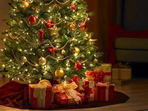 Christmas-tree.jpg