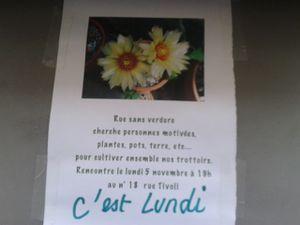 fleurs tivoli