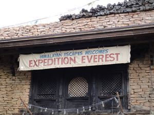 Expedition-Everest-2.JPG