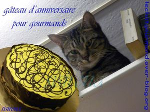 gateau anniv pour gourmands (Medium)